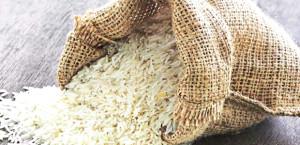 बासमती चावल निर्यात में बड़ा घोटाला